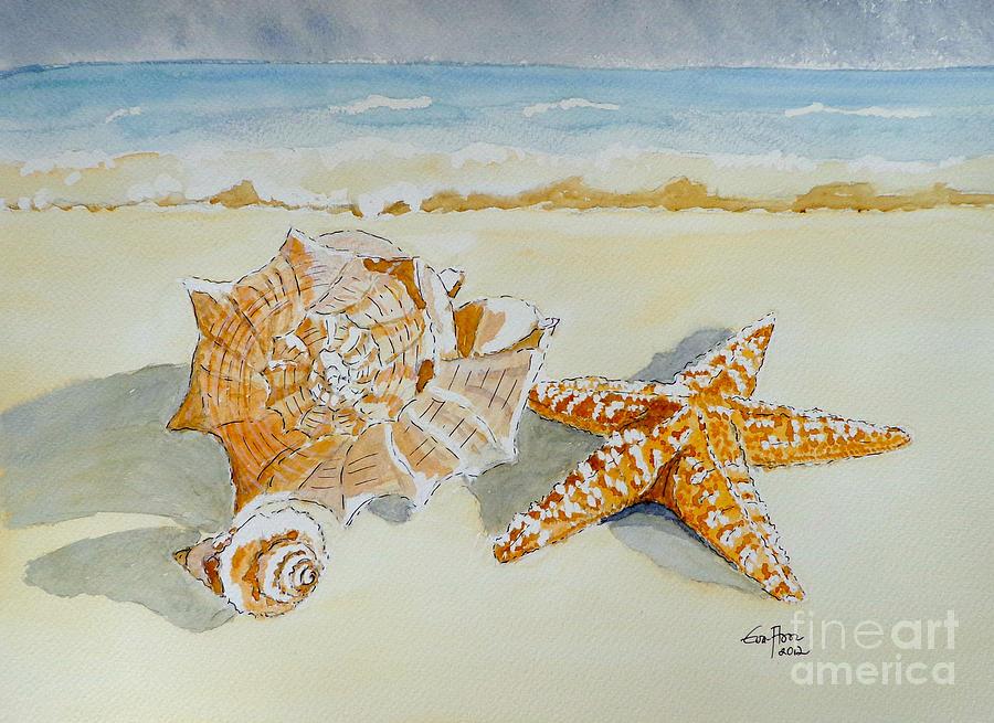 Sea Shells by Eva Ason