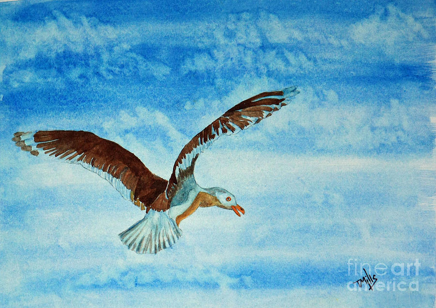 Seagull In Flight Painting