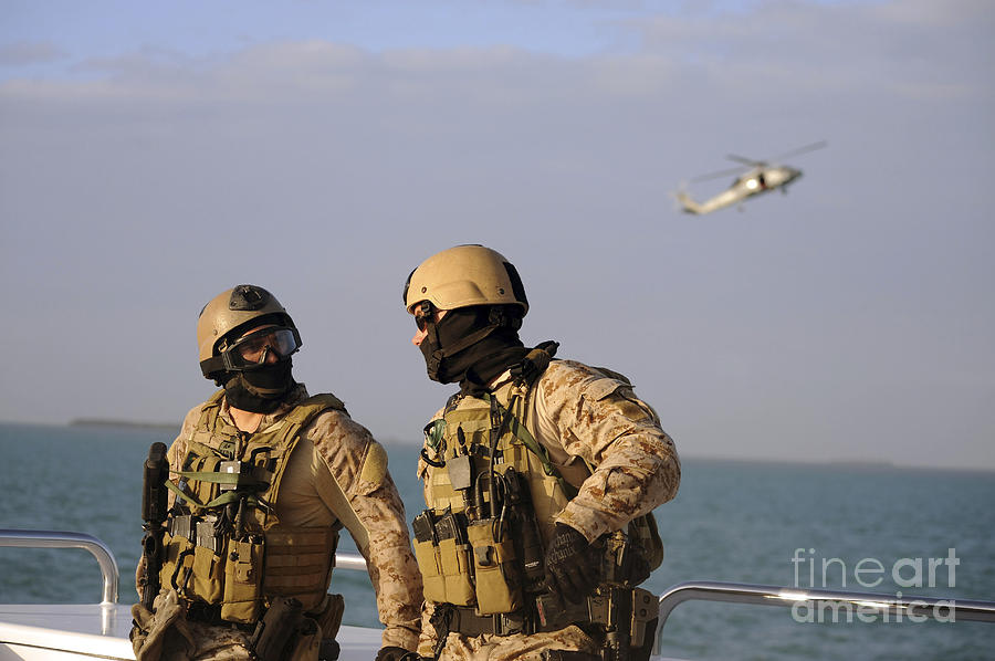 Seals Aboard A Rigid-hull Inflatable Photograph