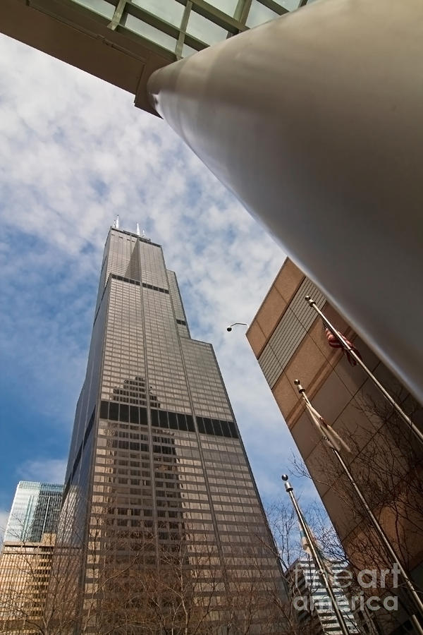 Sears Tower From Across The Street Photograph