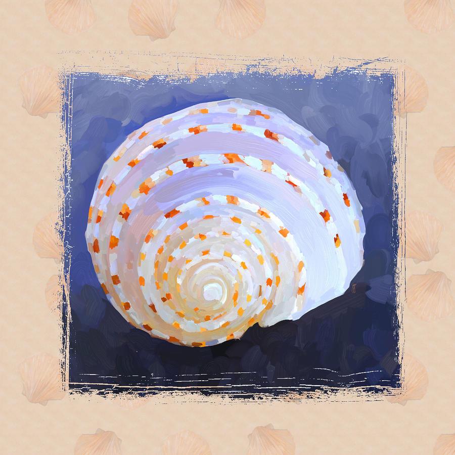 Seashell Iv Grunge With Border Painting