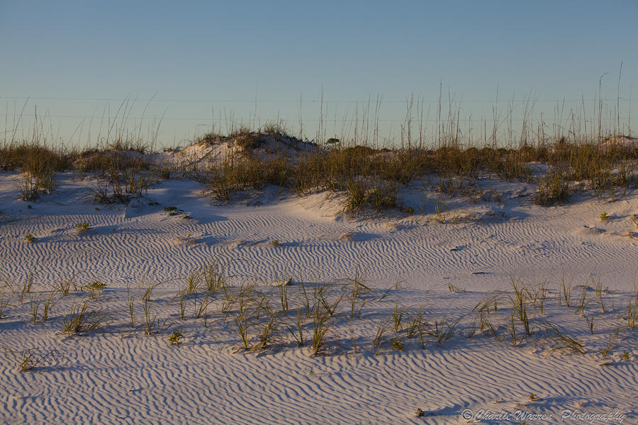 Sand Dunes Photograph - Seaside Dunes 4 by Charles Warren