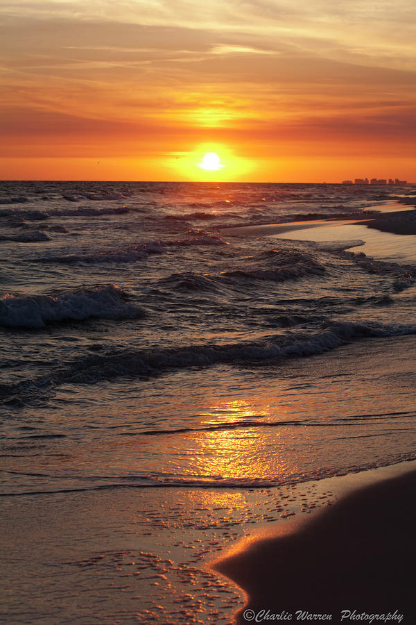 Seaside Serenade I Photograph