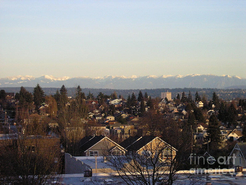 Seattle Suburb In Winter Photograph  - Seattle Suburb In Winter Fine Art Print