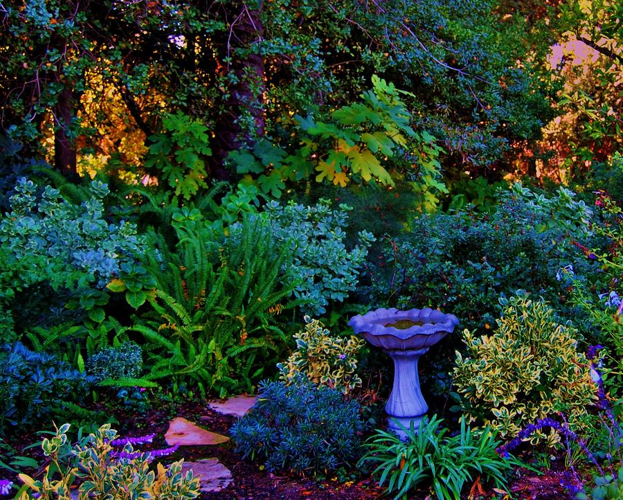 Secret Garden Photograph  - Secret Garden Fine Art Print