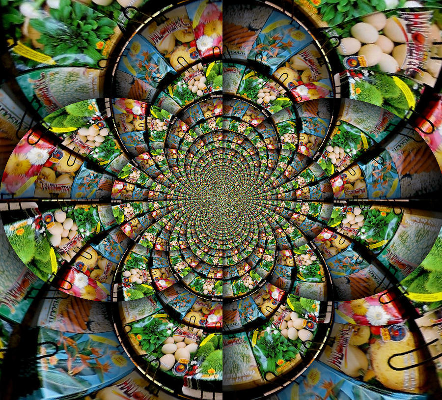 Kaleidoscope Ca: Seed Packet Kaleidoscope Photograph