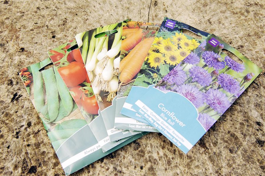 Wild Bean Photograph - Seed Packs by Johnny Greig