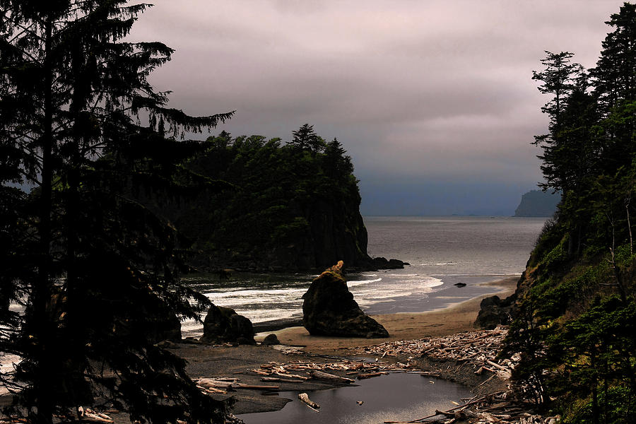 Serene And Pure - Ruby Beach - Olympic Peninsula Wa Photograph  - Serene And Pure - Ruby Beach - Olympic Peninsula Wa Fine Art Print