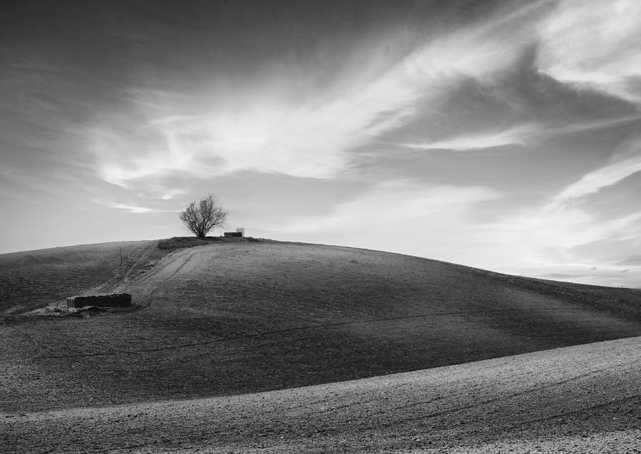 Serenity - Black And White Photograph  - Serenity - Black And White Fine Art Print