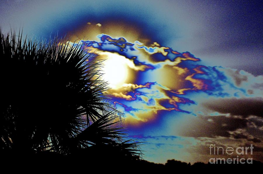 Serious Moonlight Photograph  - Serious Moonlight Fine Art Print