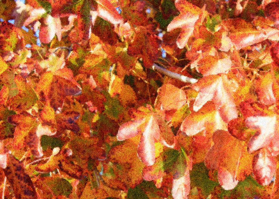 Seurat-like Fall Leaves Photograph  - Seurat-like Fall Leaves Fine Art Print
