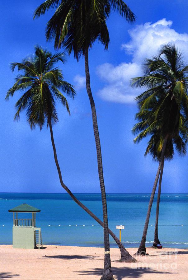 Seven Seas Beach Puerto Rico Photograph