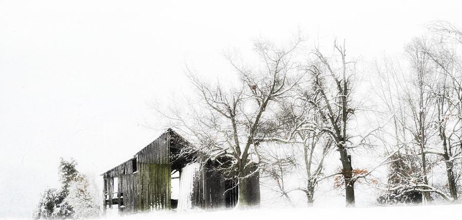 Shabby Barn Photograph