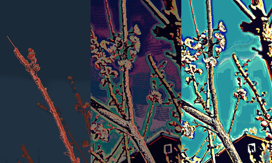 shades of Van Gough Photograph  - shades of Van Gough Fine Art Print
