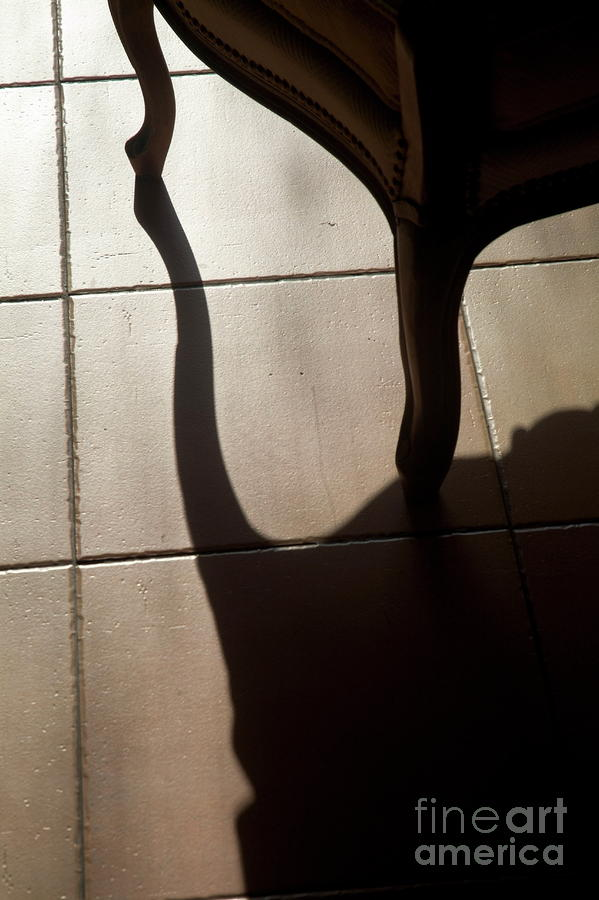 Shadow Of An Armchair On A Tiled Floor Photograph  - Shadow Of An Armchair On A Tiled Floor Fine Art Print