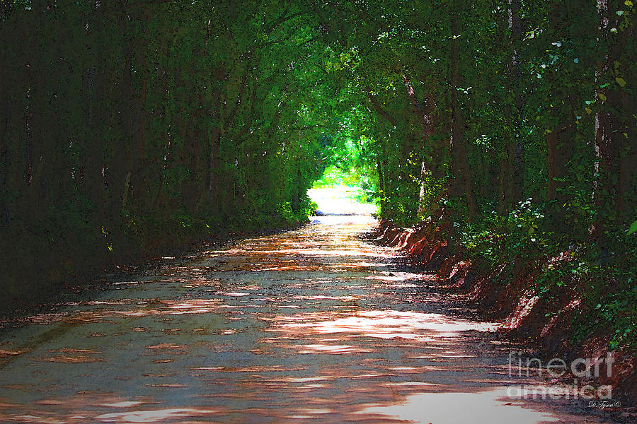 Shady Lane Painting  - Shady Lane Fine Art Print