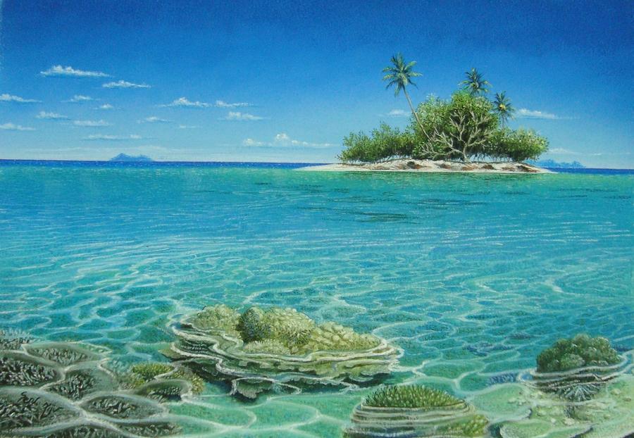 shallow-water-corals-pravin-sen.jpg
