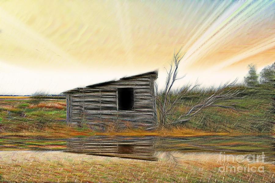 Shed Photograph - Shed In The Field by Vickie Emms