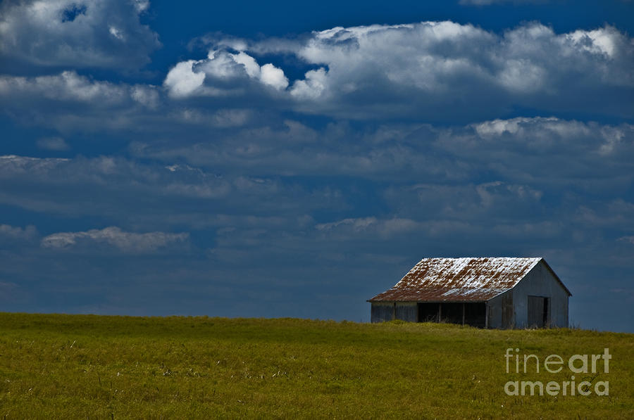 Shed In The Light Photograph  - Shed In The Light Fine Art Print