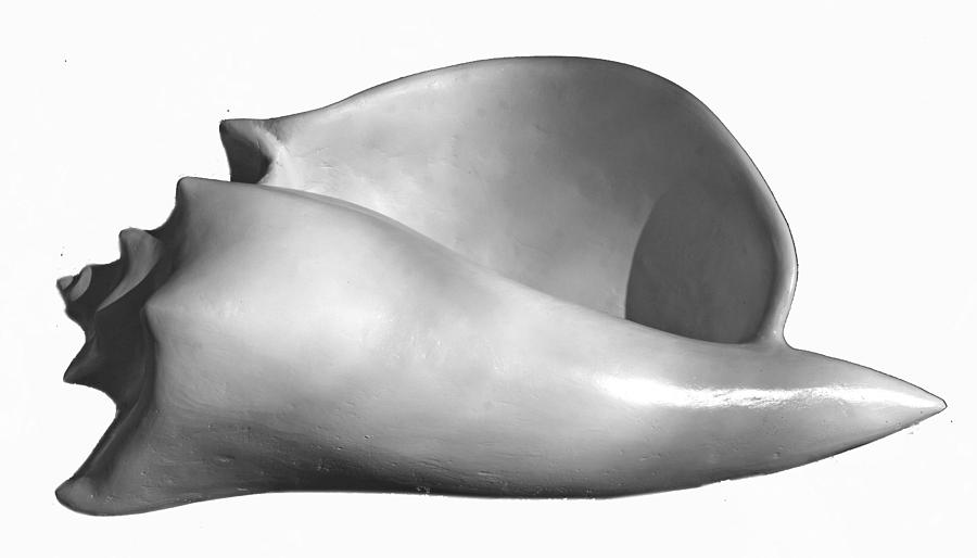 Shell Three Sculpture