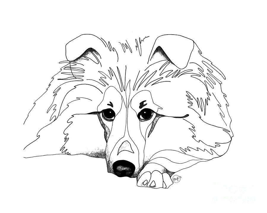 sheep dog coloring pages - photo#10