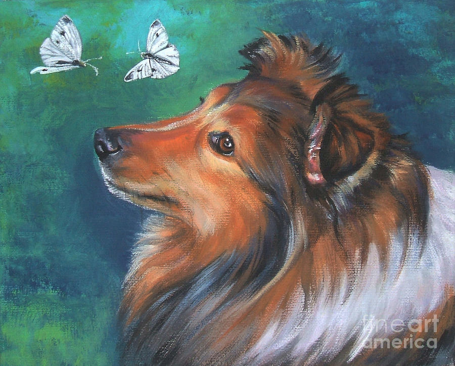Shetland Sheepdog And Butterfly Painting  - Shetland Sheepdog And Butterfly Fine Art Print