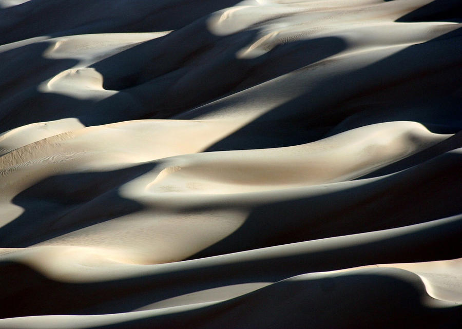 Shifting Sands Of The Libyan Sahara Photograph