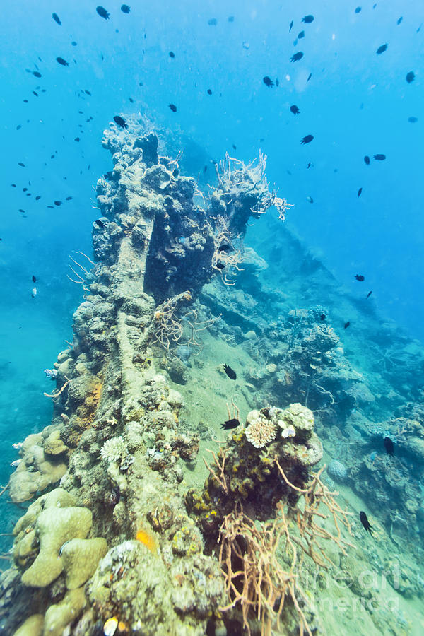 Wreck Photograph - Shipwreck  by MotHaiBaPhoto Prints