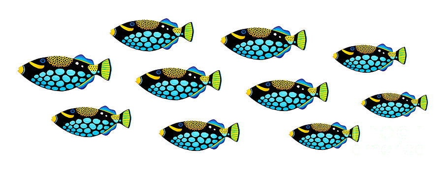 Shoal Of Clown Triggerfish  Painting  - Shoal Of Clown Triggerfish  Fine Art Print