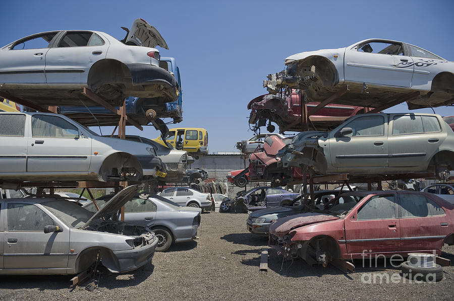Shot Of Junkyard Cars Photograph  - Shot Of Junkyard Cars Fine Art Print