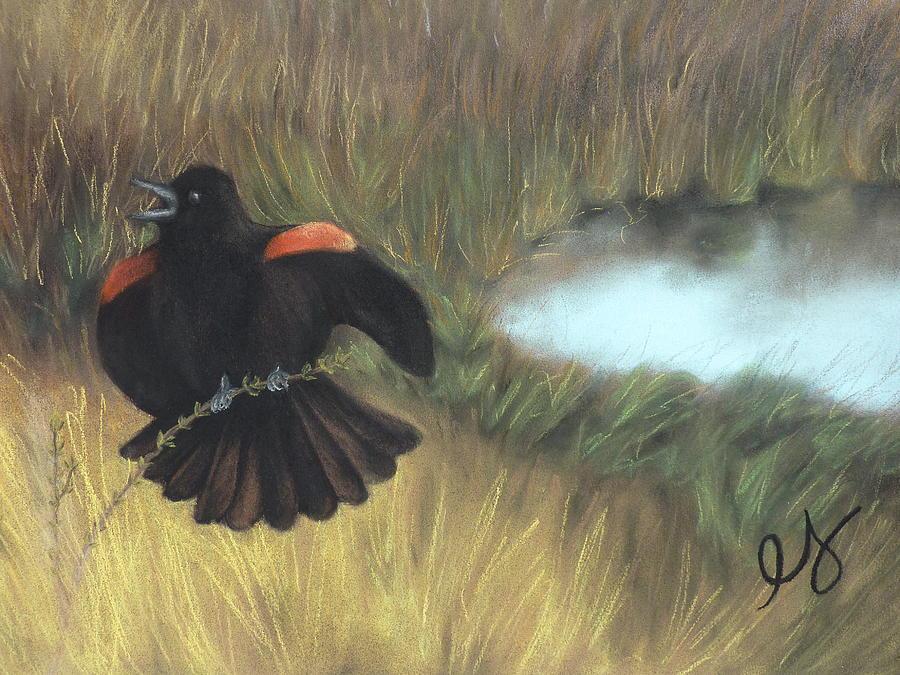Blackbird Pastel - Show-off by Estephy Sabin Figueroa