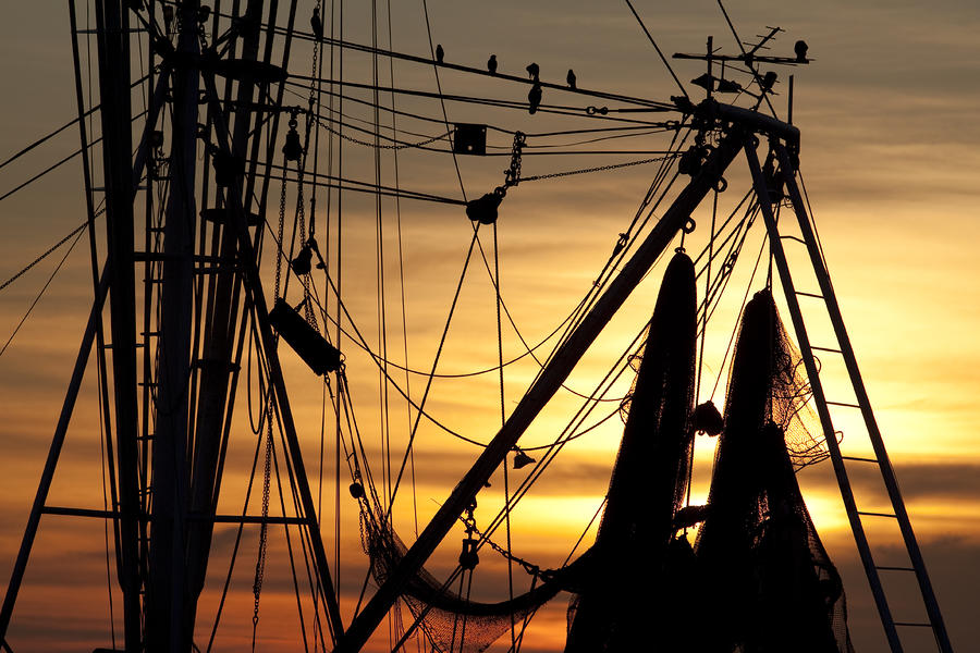 Shrimp Boat Rigging Photograph  - Shrimp Boat Rigging Fine Art Print