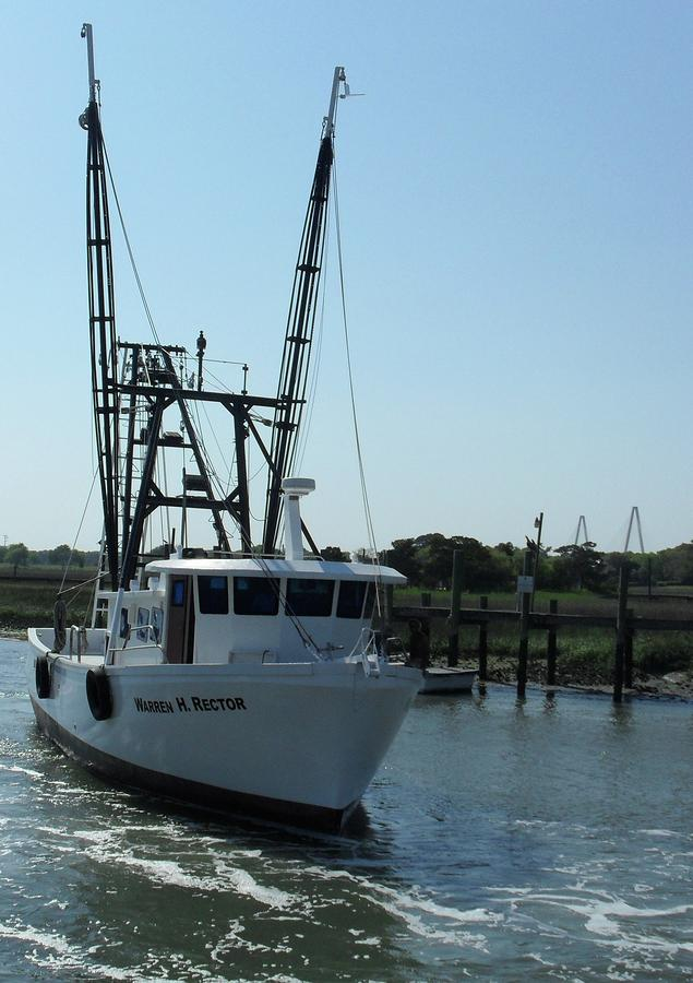 Commercial shrimp boats for autos weblog for Florida commercial fishing license