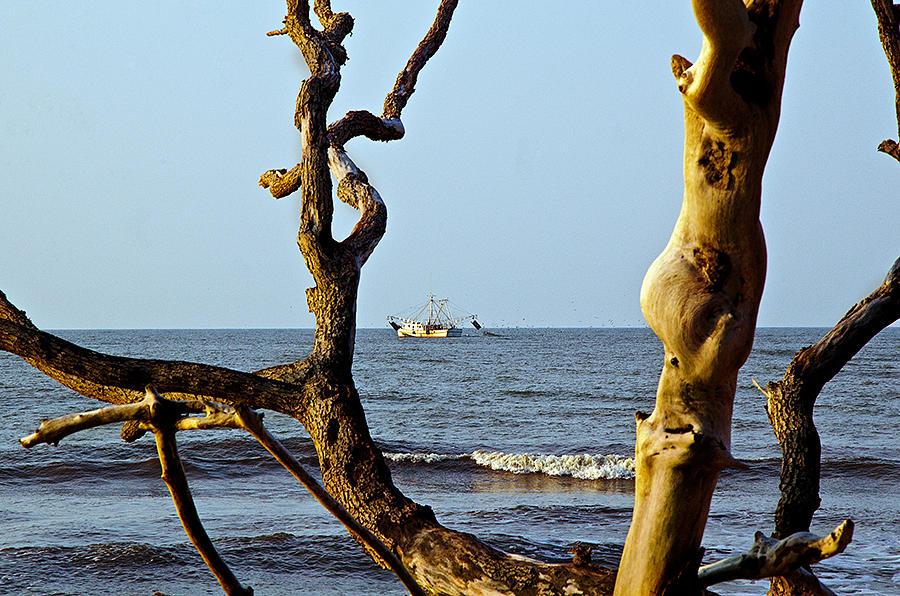 Shrimpboat Photograph - Shrimpboat by Megan Pearson