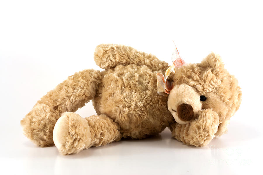 Sick Teddy Bear Photograph  - Sick Teddy Bear Fine Art Print
