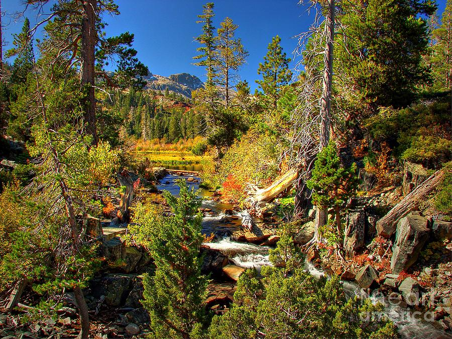 Sierra Nevada Fall Beauty At Lily Lake Photograph