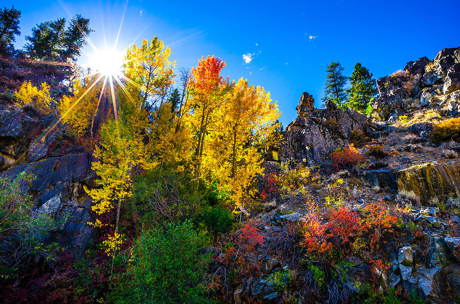 Sierra Nevada Fall Colors Lassen County California Photograph  - Sierra Nevada Fall Colors Lassen County California Fine Art Print