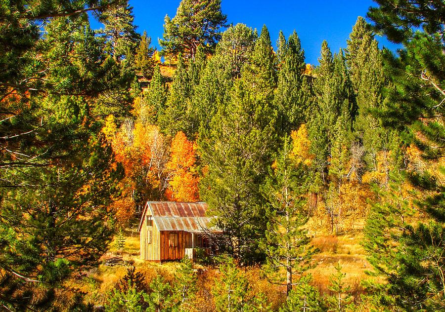 Rustic Americana Barn Photograph - Sierra Nevada Rustic Americana Barn With Aspen Fall Color by Scott McGuire