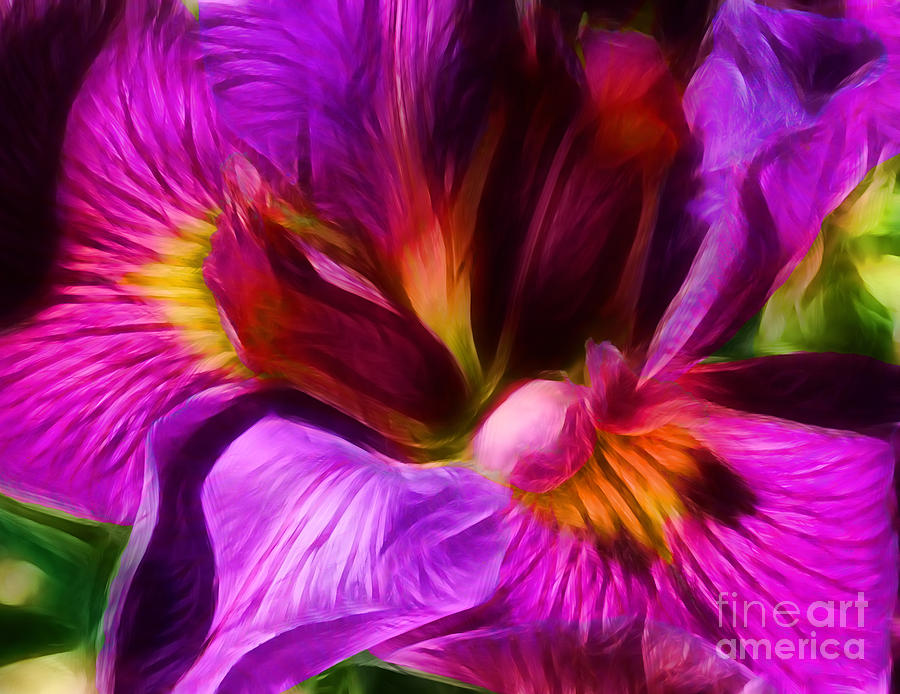 Silk Photograph - Silk And Satin by Judi Bagwell