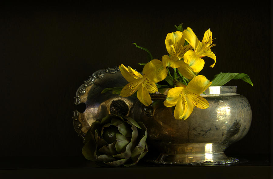 Flowers Photograph - Silver And Golden by Cindy Rubin