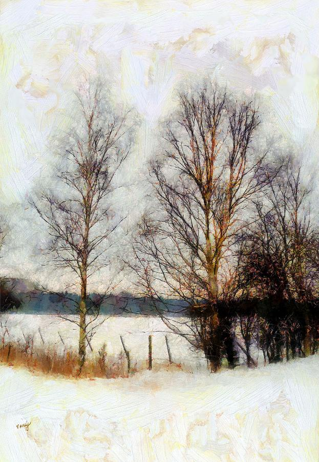 Silver Birches In The Snow Painting  - Silver Birches In The Snow Fine Art Print