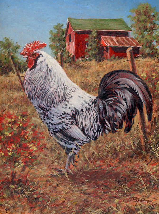 Silver Laced Rock Rooster Painting  - Silver Laced Rock Rooster Fine Art Print
