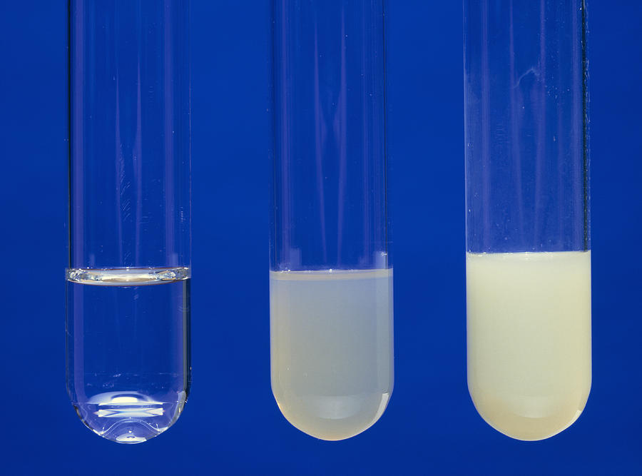 the solubility of potassium nitrate lab report