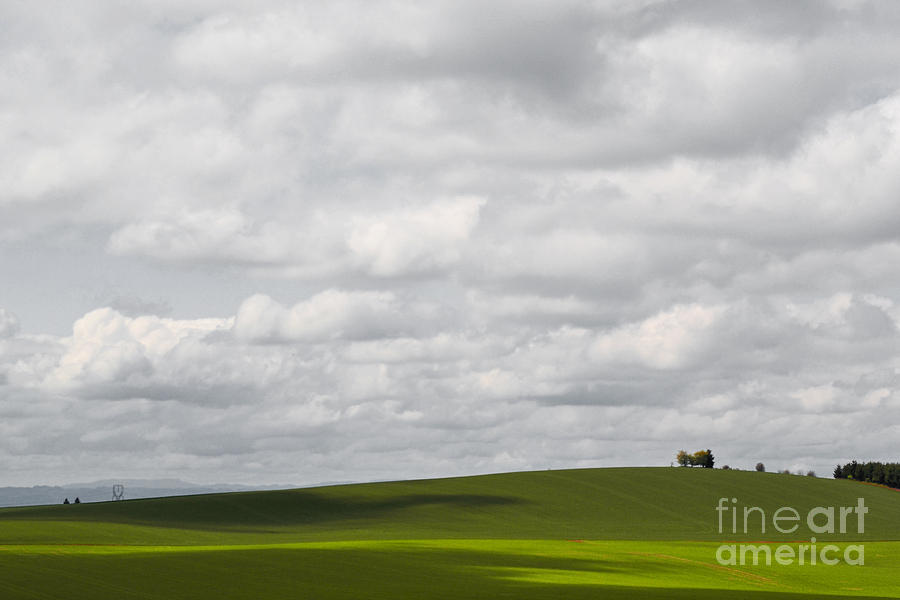 Simple Field Photograph  - Simple Field Fine Art Print