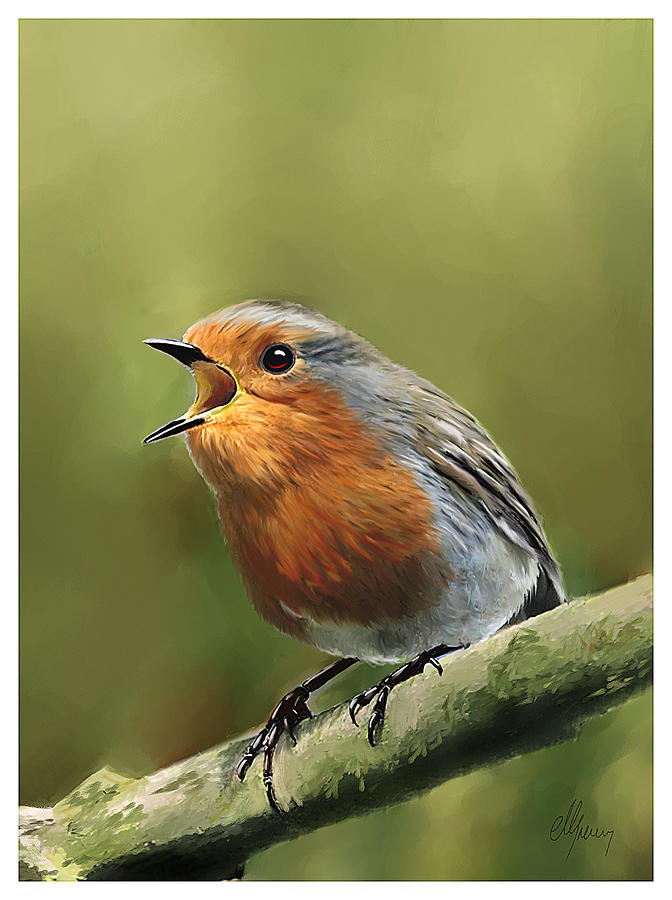 Morning Song By Red Robin Painted In Corel Painter Painting - Sing Red Robin Sing by Michael Greenaway