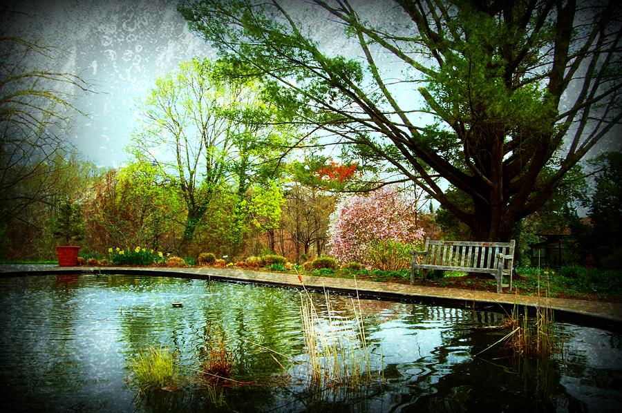 Sit And Ponder - Deep Cut Gardens Photograph  - Sit And Ponder - Deep Cut Gardens Fine Art Print