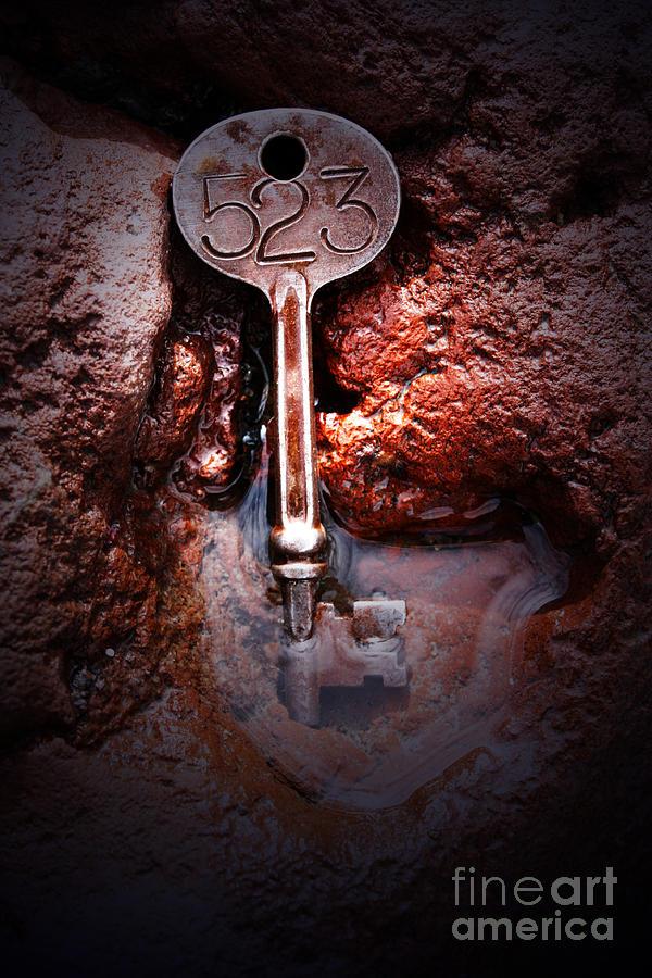 Skeleton Key No 523 Photograph by C E Dyer