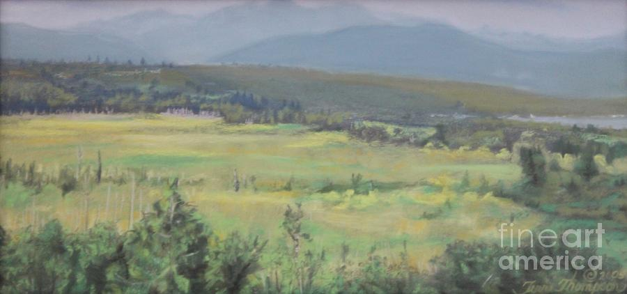 Skokomish Valley Painting