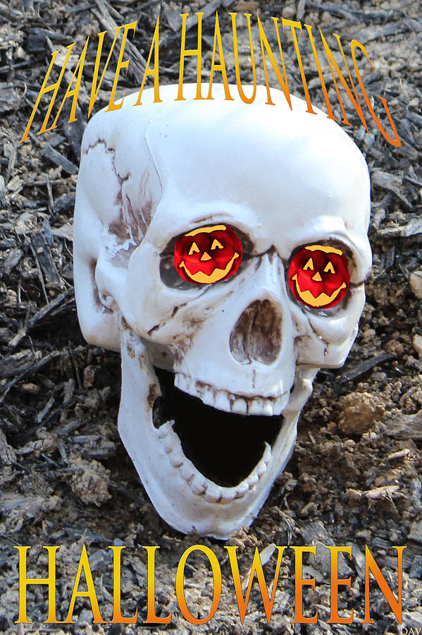 Skull Halloween Card Photograph