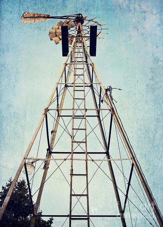 Farm Photograph - Sky High by Pam  Holdsworth